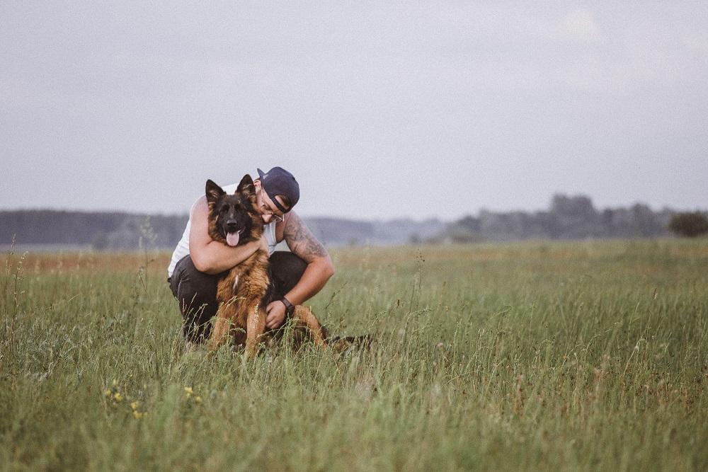 budowanie-relacji-z-psem