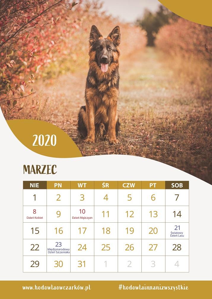 kalendarz-z-owczakiem-2020
