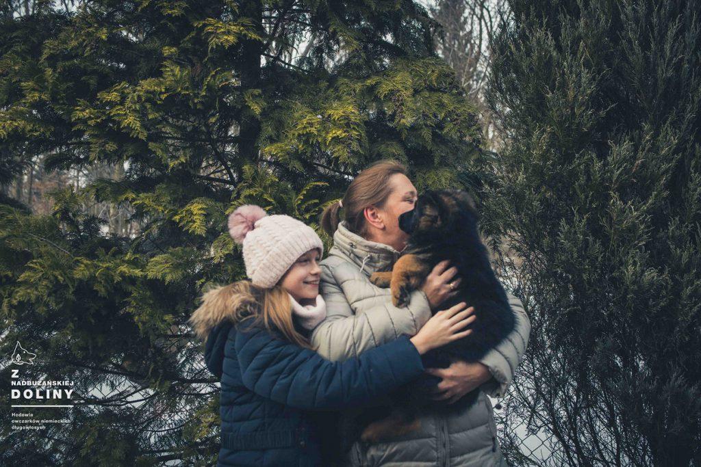szczeniak-owczarek-niemiecki-dlugowlosy